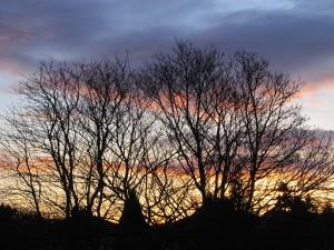 Dumbreck sunrise