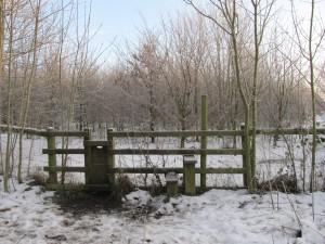 Winter walks always best in the snow