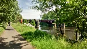 Dalmarnock Railway Bridge in all its bucolic splendour