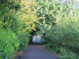 Look, a cycle path at the end of my garden!