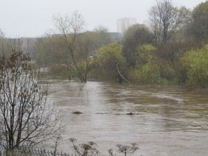 The swollen river