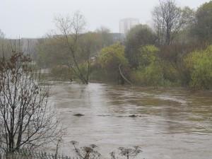 The swollen river